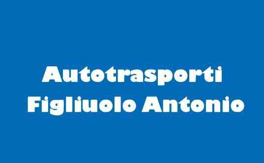 Autotrasporti Figluolo